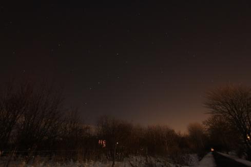 Skovhuset bag buskadset, under stjernerne...